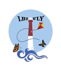 LBI International Kite Festival