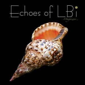 Echoes of LBI
